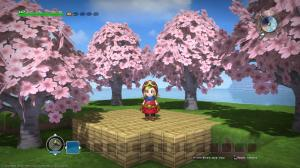 Dragon Quest Builders 06