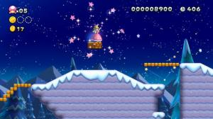 New Super Mario Bros. U Deluxe 06